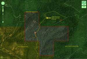 Approximate property features from aerial view